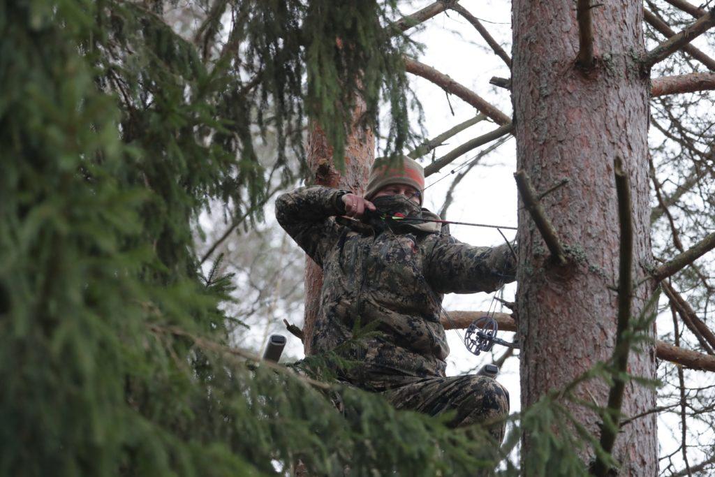 Европейские лучники в белорусском лесу